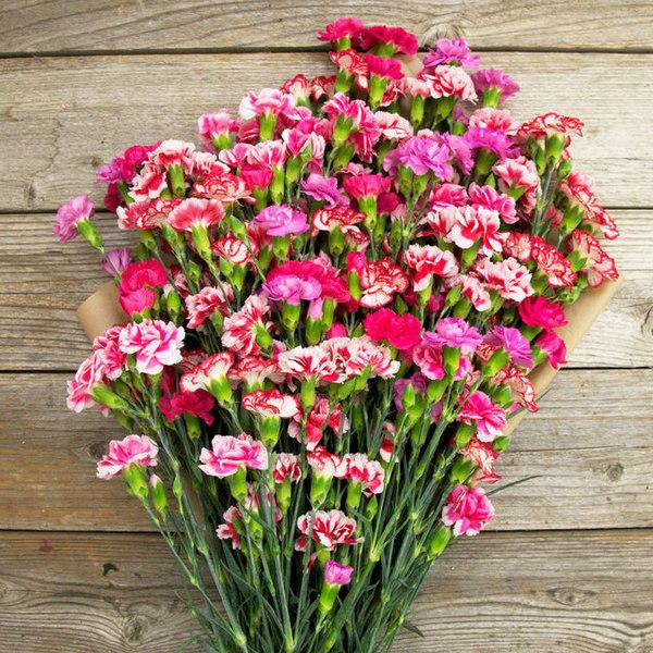 Как сделать так что бы цветы долго стояли 982