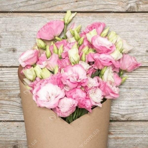 Уход за цветами лилиями домашних условиях